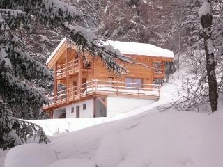 Nice 3 bedroom Chalet in Nax - Nax vacation rentals