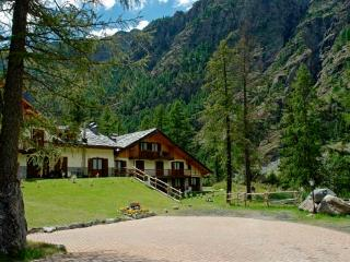 Nice Resort with Internet Access and Central Heating - Gressoney-la-Trinite vacation rentals