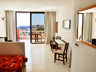 Studio apartment with fantastic sea view - Costa Adeje vacation rentals