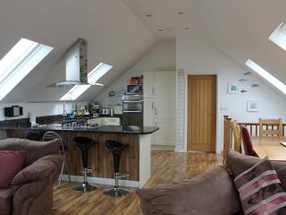 Perfect 3 bedroom House in Padstow - Padstow vacation rentals