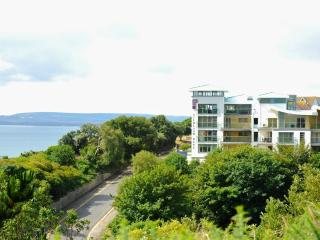 22b Studland Dene located in Bournemouth, Dorset - Bournemouth vacation rentals