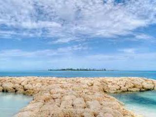 Beach, Pool & Private Courtyard - Best Studio! - Nassau vacation rentals