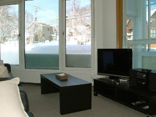 4Bed/2Bath GF Apt in Niseko 6 min walk to Lifts - Niseko-cho vacation rentals