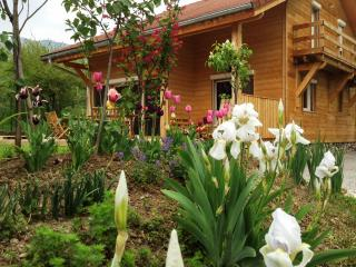 Exquisite wooden house just outside Gap, Hautes-Alpes, w/ Jacuzzi & divine mountain views - sleeps 8 - Gap vacation rentals