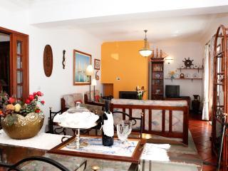 Luxurious Apartment in Costa Nova Beach - Centro Region vacation rentals