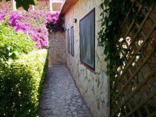 casa sul mare Giorgia con spiaggia privata n.1 - Marina di Camerota vacation rentals