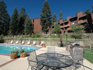 Cozy Condo with Deck and Internet Access - Mammoth Lakes vacation rentals