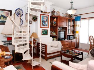 Luxurious Apartment in Costa Nova Beach 2 - Centro Region vacation rentals