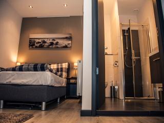 Relaxed Slapen & Vergaderen - apartment Droste - Haarlem vacation rentals