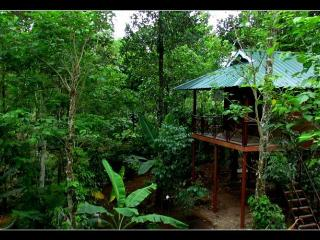 Romantic 1 bedroom Bed and Breakfast in Thekkady with Internet Access - Thekkady vacation rentals