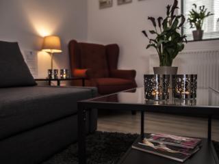 Relaxed Slapen & Vergaderen apartment Frans Hals - Haarlem vacation rentals