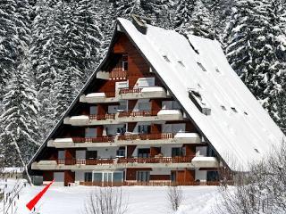 Comfortable duplex apartment 6p. beautiful mountain view Gryon/Villars Vaud - Alpe des Chaux vacation rentals