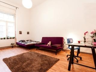 5 bedroom apartment - Budapest vacation rentals