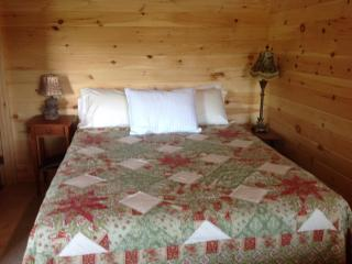 Romantic Cabin with Internet Access and A/C - Thornton vacation rentals