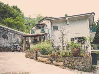 Ampia Villa immersa nel verde, natura e relax - San Martino delle Scale vacation rentals