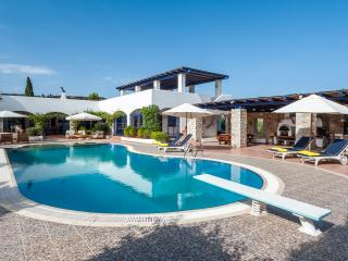 VIP Beach Villa with great gardens, Pool & Tennis - Ermioni vacation rentals
