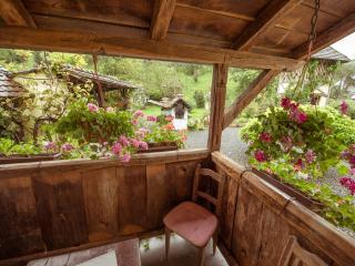Eko-etno selo Stara Kapela, Tucina kuća - Nova Kapela vacation rentals