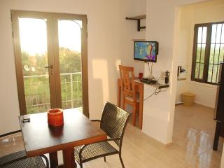 E&J Residences - Lux Studio Apartment - Sosua vacation rentals