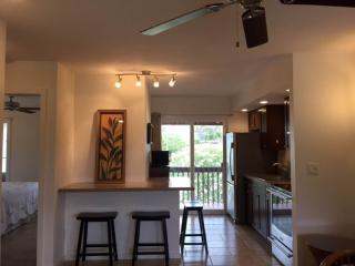 Village Manor D22Cozy, walk to beach!2 BR/1.5 bath - Kapaa vacation rentals