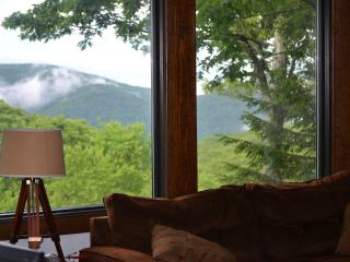 Tyro Slope-Side House Ski In/Out Yr Rnd Views w/AC - Wintergreen vacation rentals