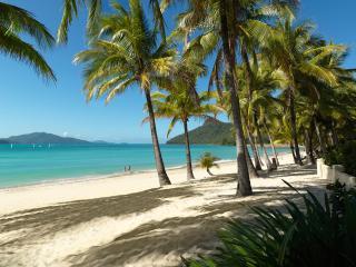 Wedding/Groups Luxury Homes/Villas - Hamilton Island vacation rentals