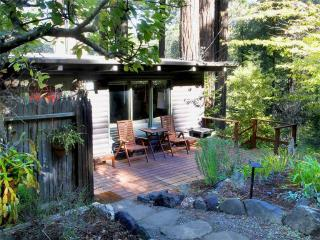TREETOP LOG CABIN - Guerneville vacation rentals