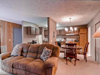 Crestview Condominiums 8 - Ketchum vacation rentals