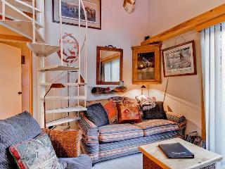 Convenient Condo with Deck and Internet Access - Ketchum vacation rentals