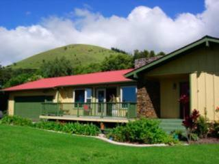 Your Adventure in Paradise Awaits! - Kamuela vacation rentals