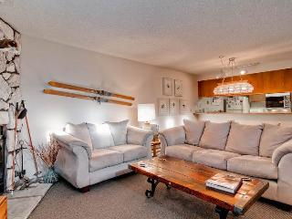 3 bedroom Apartment with Deck in Ketchum - Ketchum vacation rentals