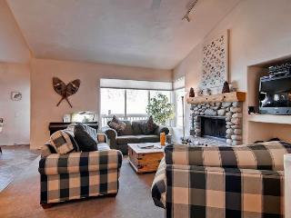 Nice Condo with Deck and Internet Access - Ketchum vacation rentals