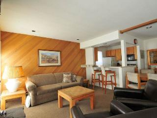 Sawtooth Condominiums 28 - Ketchum vacation rentals