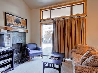 Snowrun Condominium 3 - Ketchum vacation rentals