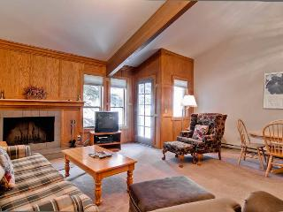 Trail Creek Condominiums 2 - Ketchum vacation rentals