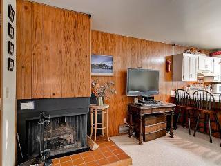 Bright 1 bedroom Condo in Ketchum with Internet Access - Ketchum vacation rentals