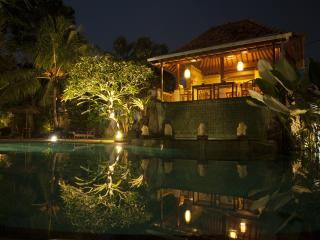Villa Sonia Ubud - Ubud vacation rentals