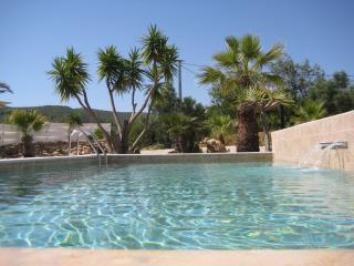 Lovely Condo with Internet Access and Garden - Moncarapacho vacation rentals
