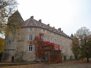 B&B Le Chateau de Frasne - Suite 1 - Frasne-le-Chateau vacation rentals