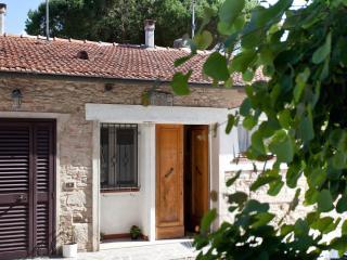Romantic 1 bedroom House in Marina di Castagneto Carducci - Marina di Castagneto Carducci vacation rentals