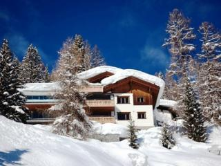 Fabulous contemporary chalet in Davos - Davos vacation rentals