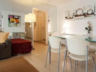 2 bedroom Condo with Internet Access in Cannes - Cannes vacation rentals