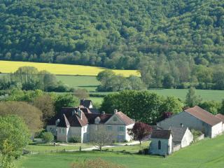 Domaine Rennepont en Champagne - Colombey-les-deux-Eglises vacation rentals