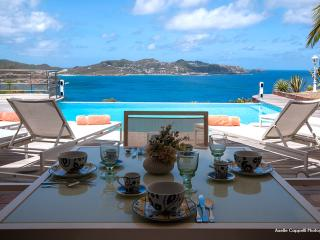 Nice Villa with Internet Access and DVD Player - Saint Barthelemy vacation rentals