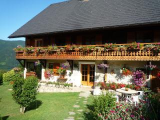 Le Fraisy Location de vacances  entre lacs et montagnes - Alex vacation rentals