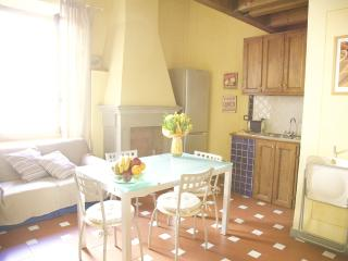 Lovely Condo with Internet Access and Dishwasher - Florence vacation rentals