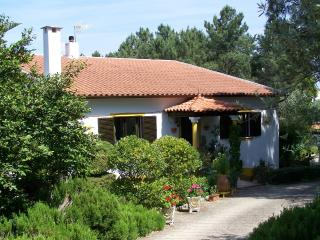 Casa Pedreiro - Tomar vacation rentals