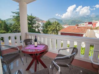 Apartments Dimić Ellite - One Bedroom Apartment with Balcony 2 - Budva vacation rentals