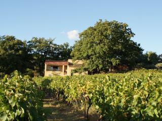 Villa 8p prviate pool in the vine yards of Vaison-le-Romaine Vaucluse - Vaison-la-Romaine vacation rentals