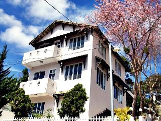 Sunflower Villa - Promotion $200 - Lam Dong Province vacation rentals