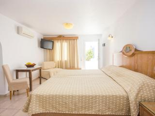 Nice Studio with Internet Access and A/C - Ornos vacation rentals